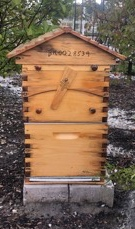 Croped bee hive