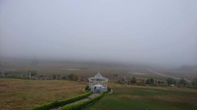 farm fog